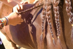 denne-tabory-letne-rodeo-15-800x533